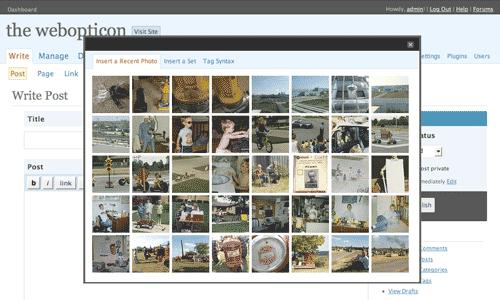 Flickr Tag