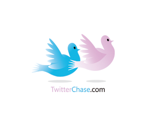 Twitter Chase