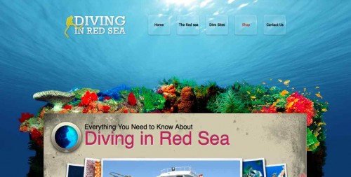 Diving in Red Sea