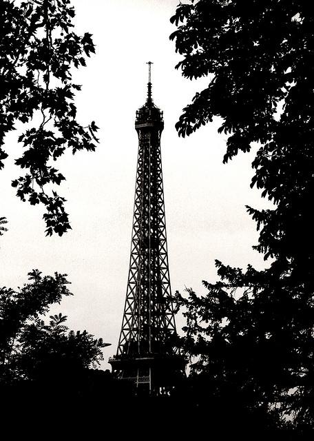 Eiffel Tower (18)