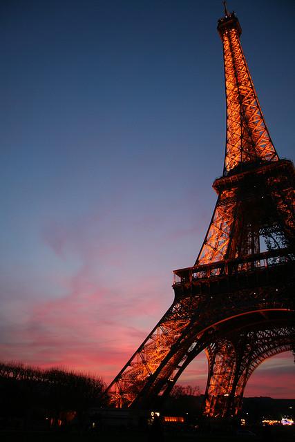 Eiffel Tower (21)