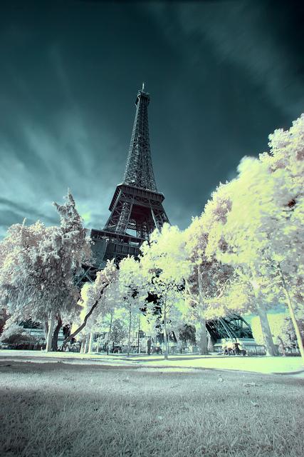 Eiffel Tower (27)
