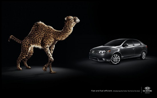 Print Advertisements with Animals (4)