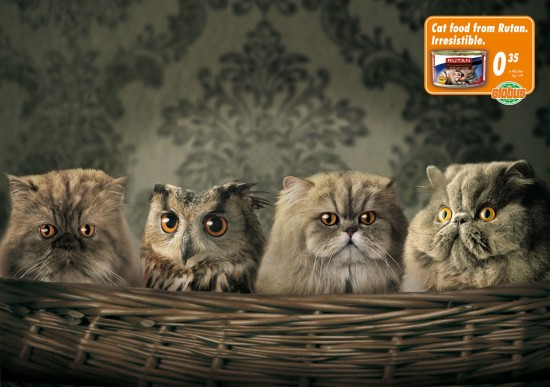 Print Advertisements with Animals (19)