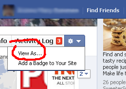View Option in Facebook Timeline