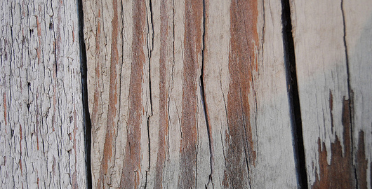 01-wood-texture-sixrevisions