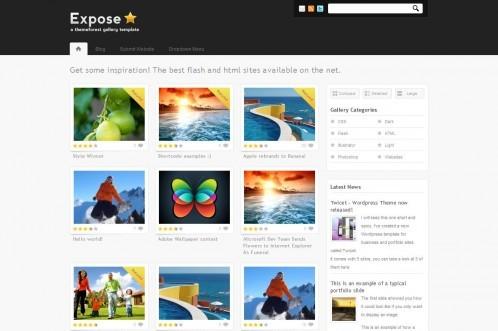 Expose-wordpress-gallery-theme