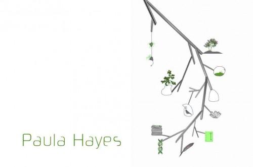 paula-hayes-500x330