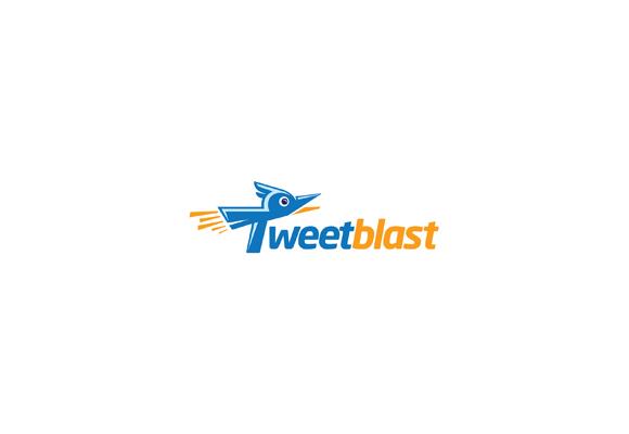 Twitter Inspired Logo 15