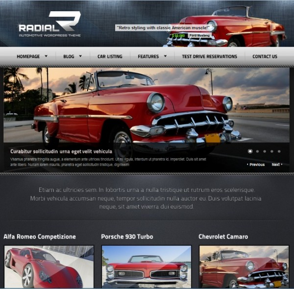 radia wordpress theme