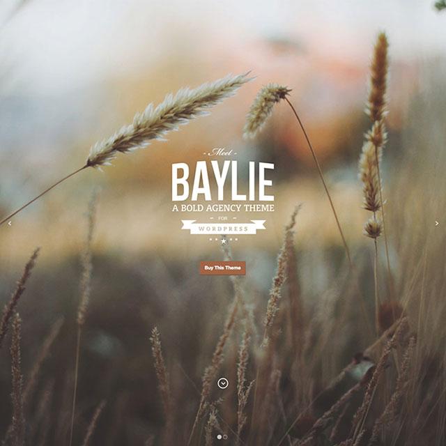 Baylie-WordPress-Theme