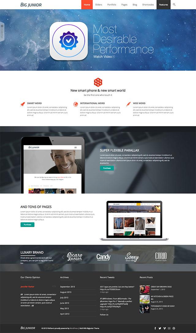 Big-Junior-Responsive-WordPress-Theme