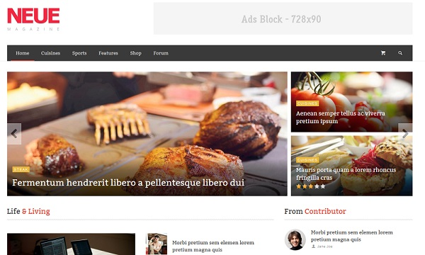 NEUE wordpress theme